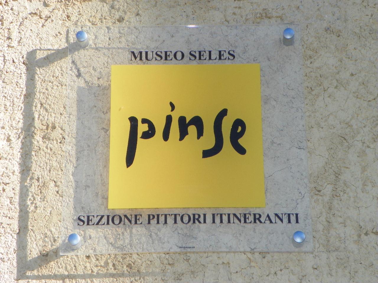Logo Museo Pinse