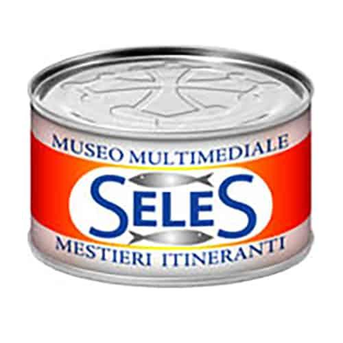 Logo Museo Seles